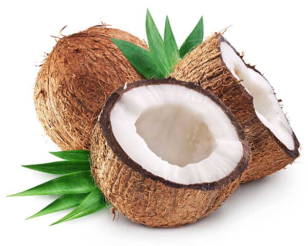 is coconut bad for cats