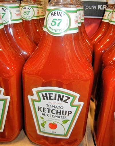 is ketchup harmful for cats?