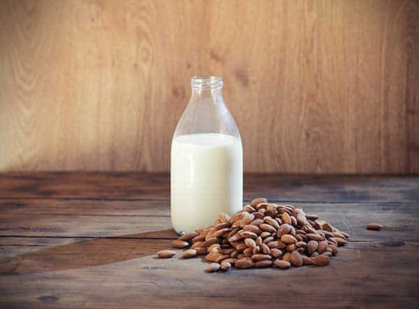 is almond milk good for cats?