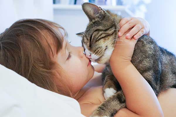 cute little girl hugging and kissing a cat