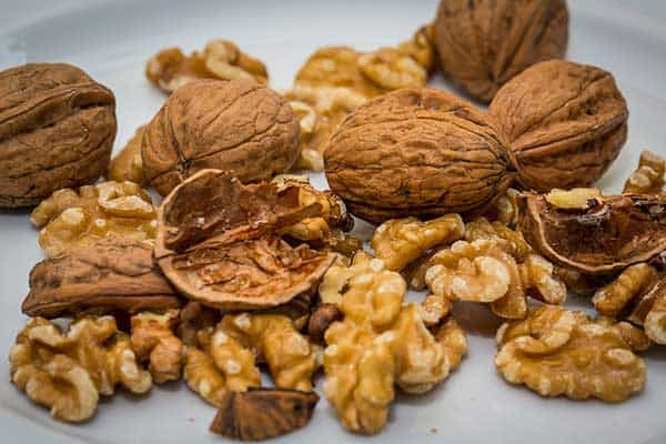 are walnuts bad for cats?