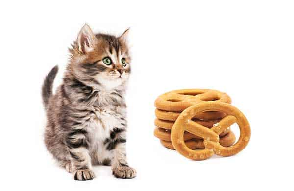can my cat eat pretzels?