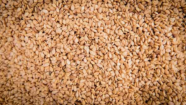 Side Effects of Sesame Seeds for Cats